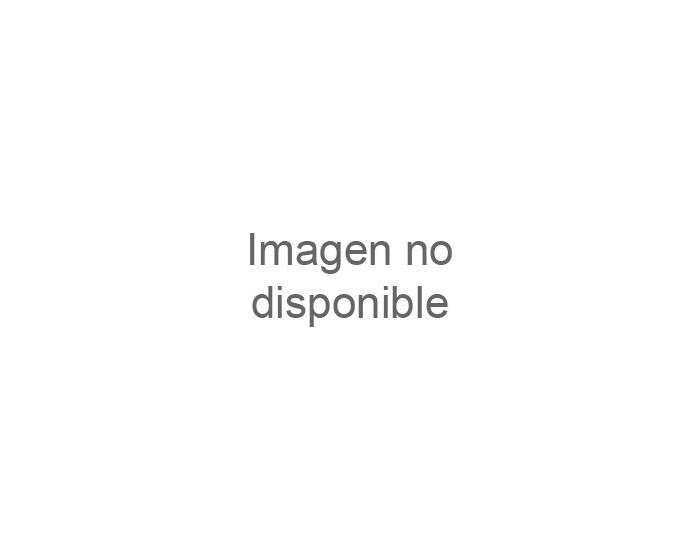 PLANCHA ALMISON SERIE 550,DE CROMO DURO DE 900MM